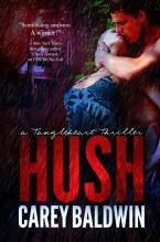hush-by-carey-baldwin-ebooklg-e1373254420916