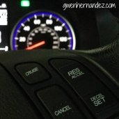 picture of cruise control
