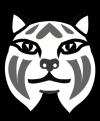 LynxFace-final-sm